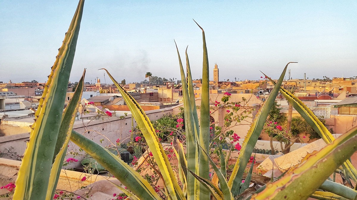 Marrakech overview from the rooftop @ Riad Enija