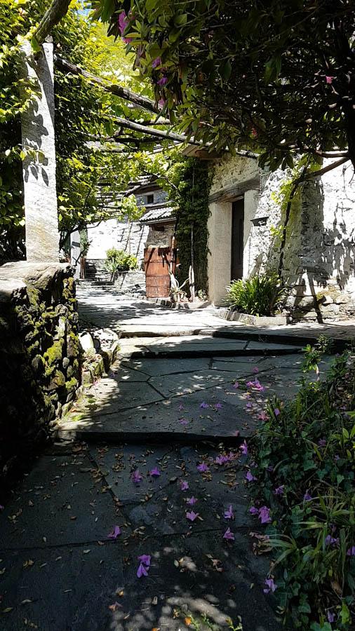 Tenuta Casa Cima, Guesthouse, Garden and Pergola