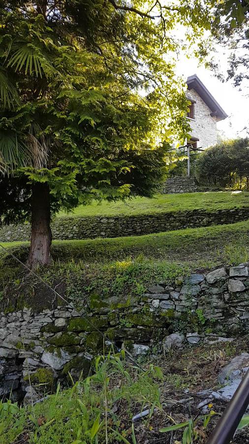 Tenuta Casa Cima, Guesthouse, Garden
