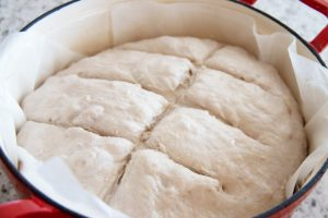 Bread Dough for a Walnut Bread