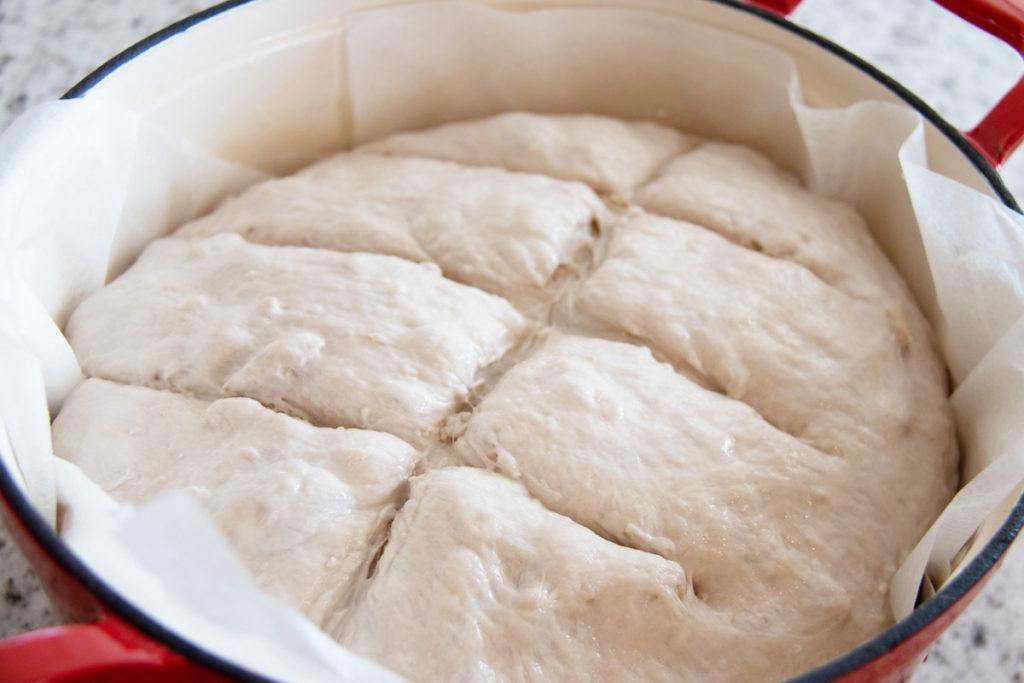 Bread Dough for a Walnut Bread