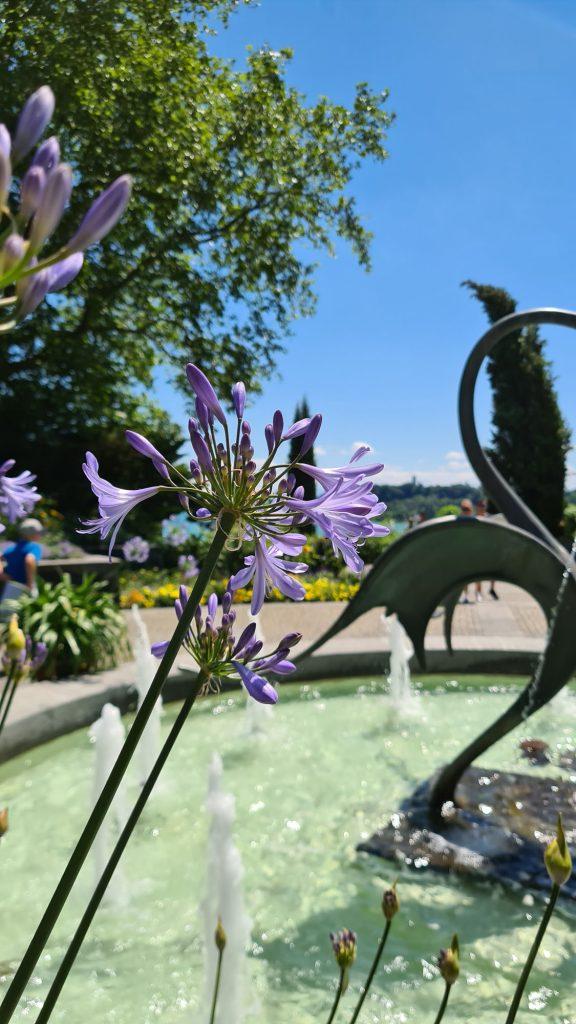 Fountain, Insel Mainau, Lake Constance