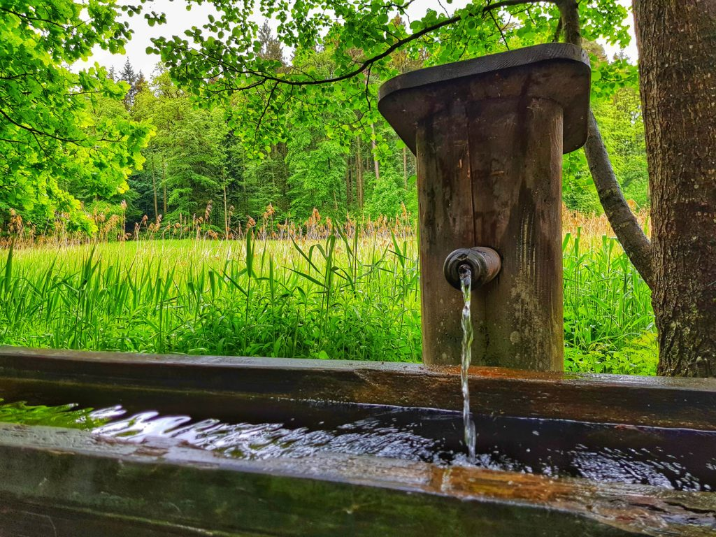 Wooden Fountain at the Edge of the Sihlwald Pond