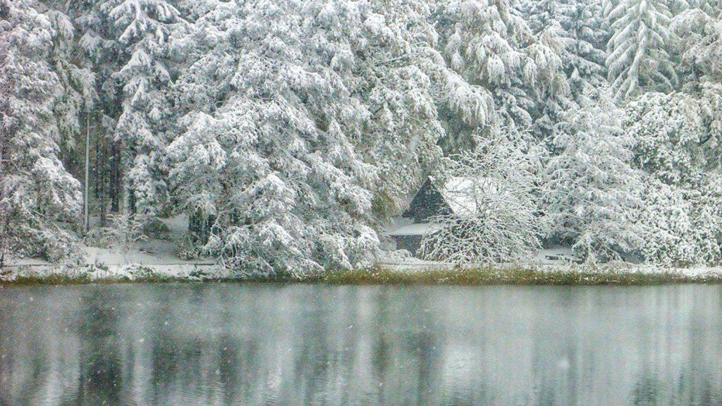 Winter Impression Sihlwald Pond including the little forest cottage