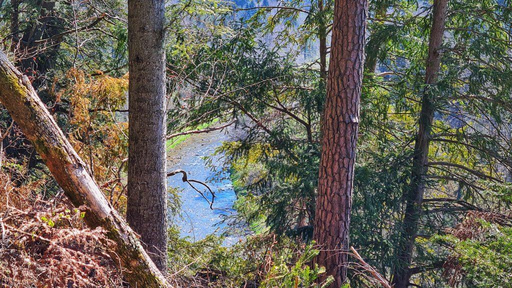 Sihlwald, Sihl Valley Impressions 2021, Sihl river