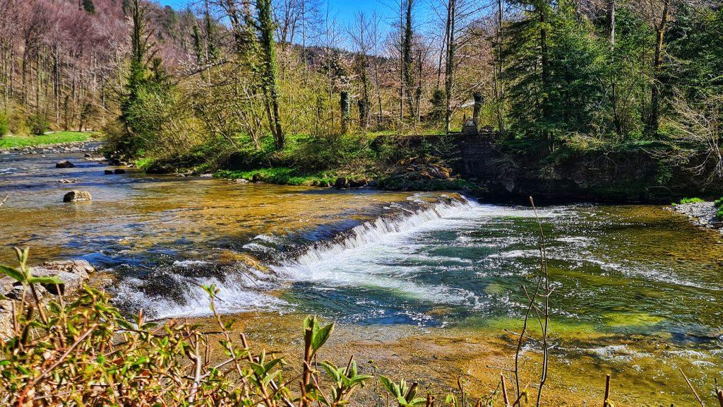 ihlwald, Sihl Valley Impressions 2021, Sihl river